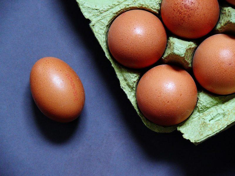 egg-1803361_960_720