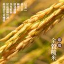 爆米片_新圖_06_米n_800